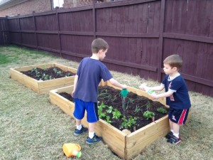 boys together garden